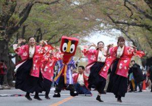 「富岡町さくら祭り 2018」で踊る「チーム富岡さくらYOSAKOI」の皆さん=伊藤孝さん提供