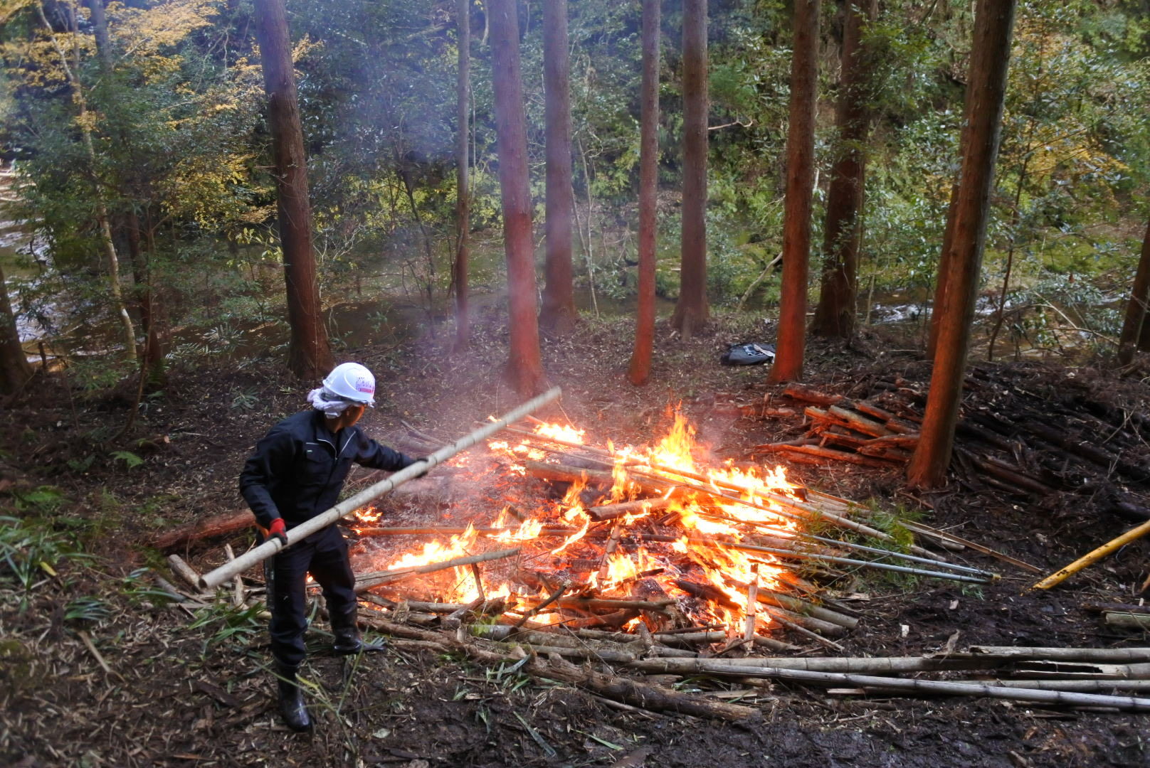 伐った竹はそのままたき火にくべる。チクリンジャーの活動にて。 2m離れていても炎の暖かさを感じる