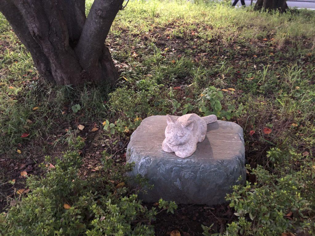 写真4 一ノ瀬さんの部屋に出入りしていたおじいちゃん猫、「みゃーさん」像(著者撮影) 寮生から可愛がられていたみゃーさんの骨は、この桜の木の下に埋められている