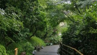 庭園づくりを通じた自然保護 老舗ホテルの試み ー早稲田とSDGsー
